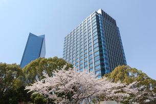 大阪ビジネスパークと桜の写真素材 [FYI03376745]
