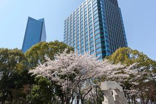 大阪ビジネスパークと桜の写真素材 [FYI03376762]