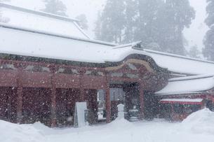 雪の比叡山延暦寺 雪降る根本中堂の写真素材 [FYI03377010]