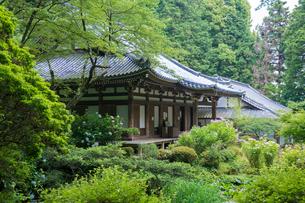 岩船寺本堂の写真素材 [FYI03377029]