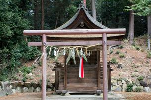 篠原神社本殿の写真素材 [FYI03377031]