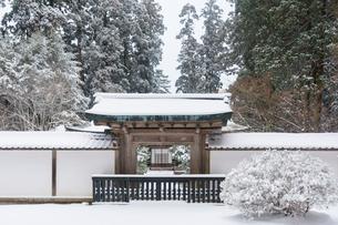 雪の比叡山延暦寺 浄土院の写真素材 [FYI03377042]