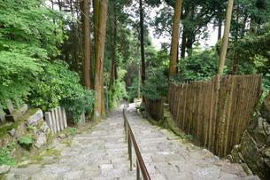 長命寺山門から見た参道(808段の石段)の写真素材 [FYI03377058]