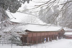 雪の比叡山延暦寺 根本中堂の写真素材 [FYI03377068]