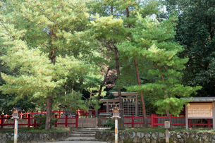 桧原神社の写真素材 [FYI03377075]