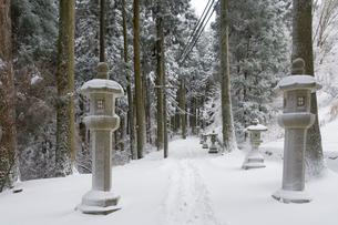 雪の比叡山延暦寺 東塔~西塔間の山道の写真素材 [FYI03377092]