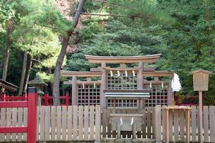 桧原神社三ツ鳥居の写真素材 [FYI03377106]