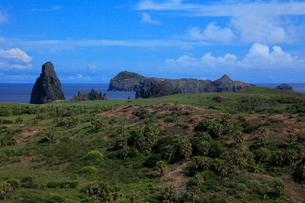 聟島 丘陵地 針の岩の写真素材 [FYI03377205]