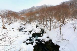 冬の羅臼川,の写真素材 [FYI03377308]