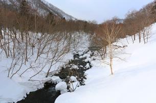 冬の羅臼川,の写真素材 [FYI03377314]