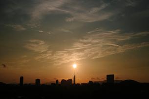 福岡城天守台跡から望む福岡市の街並みの写真素材 [FYI03377481]