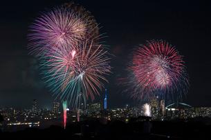 西日本大濠花火大会の写真素材 [FYI03377537]