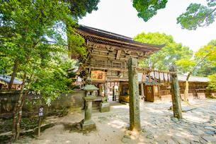 櫻井神社の写真素材 [FYI03377655]