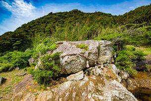 大御神社のさざれ石の写真素材 [FYI03377678]