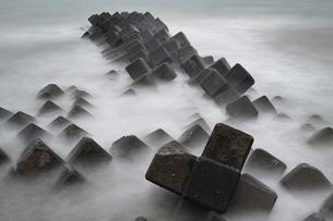 surf 波音 #10の写真素材 [FYI03378017]