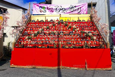 かつうらビックひな祭りの写真素材 [FYI03378061]