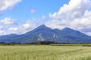 ローカル線と磐梯山の写真素材 [FYI03378132]