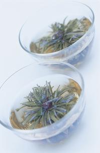 中国茶の写真素材 [FYI03378340]