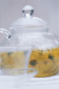 中国茶と微菊の写真素材 [FYI03378358]