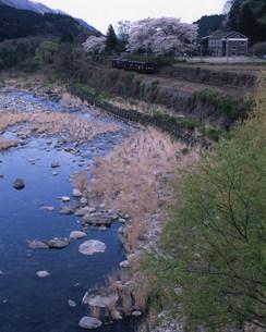 春の渡良瀬川とわたらせ渓谷鉄道と木造校舎の写真素材 [FYI03379431]