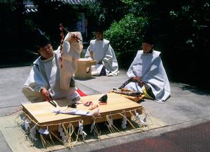 三枝祭 式庖丁奉納 漢国神社の写真素材 [FYI03379444]