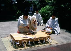 三枝祭 式庖丁奉納 漢国神社の写真素材 [FYI03379534]
