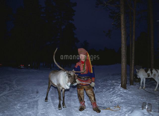 トナカイ牧場 ザーメ民族の写真素材 [FYI03380810]