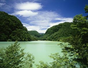 夏の品木ダム 上州湯ノ湖の写真素材 [FYI03380958]