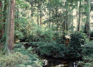 室の八島 大神神社 歌枕の地の写真素材 [FYI03380991]