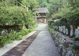 徳音寺山門の写真素材 [FYI03381002]