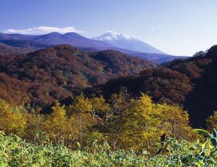 仙岩峠より岩手山を望むの写真素材 [FYI03381009]