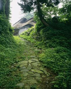 旧北国街道木の芽峠の写真素材 [FYI03381020]