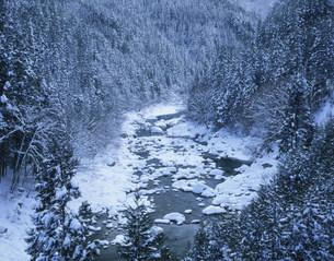 雪積もる双六渓谷の写真素材 [FYI03381033]