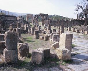 ジェミラ考古遺跡(劇場通り)の写真素材 [FYI03381645]