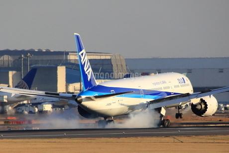 着陸の写真素材 [FYI03381795]