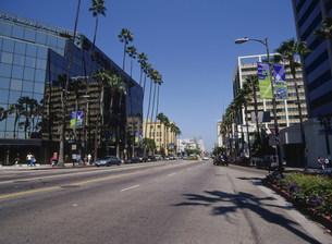 ハリウッドストリートの写真素材 [FYI03381931]