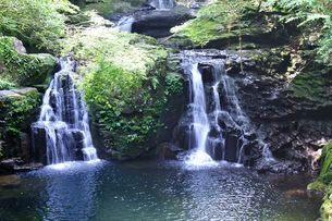 赤目四十八滝荷坦滝の写真素材 [FYI03382161]