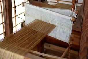 カイコの機織り機の写真素材 [FYI03382173]