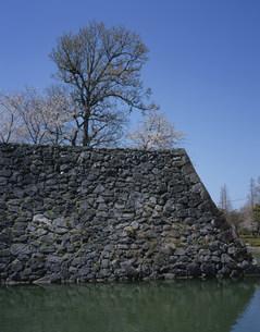 桜咲く八代城跡の写真素材 [FYI03382343]