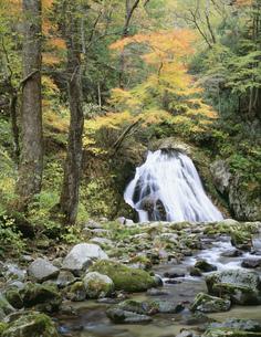 背戸峨廊片鞍の滝の写真素材 [FYI03382344]