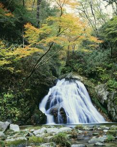 背戸峨廊片鞍の滝の写真素材 [FYI03382349]