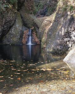 秋の龍神峡亀ヶ淵の写真素材 [FYI03382366]