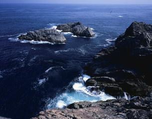 碁石岬海岸の写真素材 [FYI03382369]