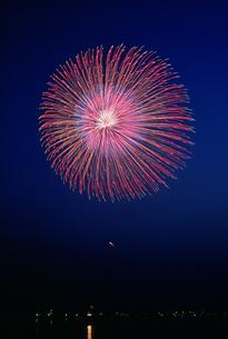 いわき小名浜ミュウ花火 昇り曲導付三重芯変化菊の写真素材 [FYI03382538]