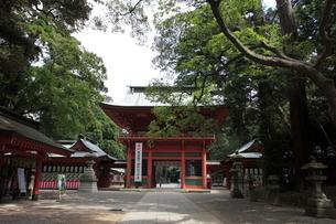 鹿島神宮 参道より見た楼門の写真素材 [FYI03382583]