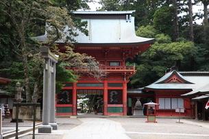 鹿島神宮の写真素材 [FYI03382586]