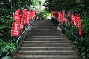 大稲荷神社 参道の旗の写真素材 [FYI03382595]