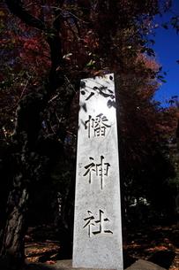 下高井戸浜田山八幡神社 社号標の写真素材 [FYI03382612]