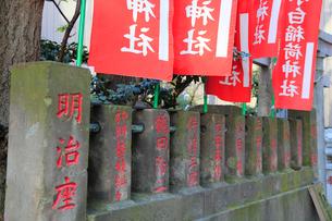 讃岐小白稲荷神社有名人の名が刻まれた玉垣と旗墓の写真素材 [FYI03382667]