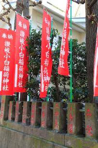 讃岐小白稲荷神社有名人の名が刻まれた玉垣と旗の写真素材 [FYI03382691]